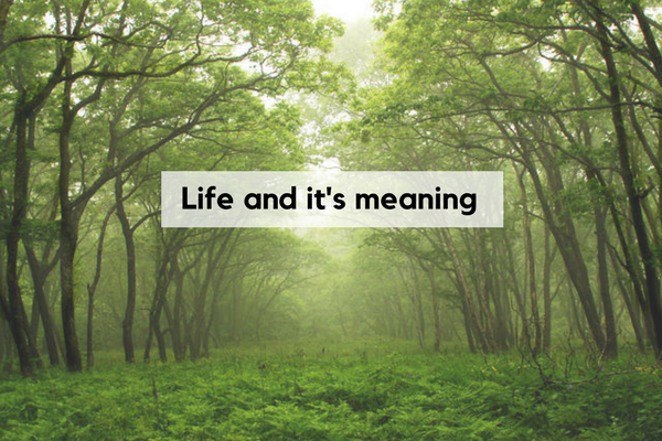 Life and its meaning